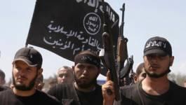 Le régime syrien a perdu toutes les localités dans la province de Hama