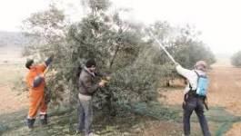 Batna : les habitants de la commune de Boumeguer sont en colère