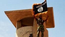 Daech : combien de jihadistes en Libye ?