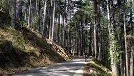 Batna : la nouvelle route de Oum-Erkha verra le jour bientôt