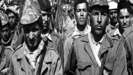 12 pays ont remis à l'Algérie des archives sur la guerre de libération