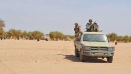 Un terroriste armé arrêté à In Amenas, annonce la Défense