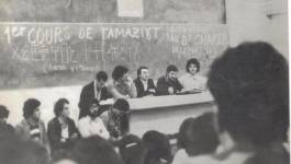 """Tamazight langue """"officielle"""" : le désenchantement de Hend Sadi"""