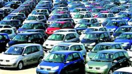 Algérie : Les importations de véhicules seront réduites de moitié par le gouvernement