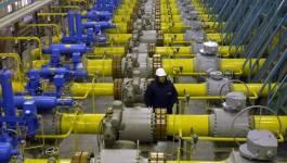 Chute des cours du pétrole et rapport alarmant de la Banque d'Algérie