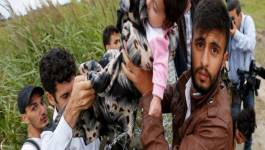 Drame en Europe : 6.500 migrants bloqués à la frontière gréco-macédonienne