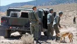 Neuf casemates détruites à Médéa, annonce l'ANP