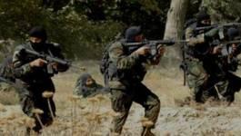 Deux terroristes neutralisés par l'ANP en Kabylie et In Aménas