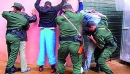 Deux bandes de trafiquants neutralisées par la gendarmerie à Batna