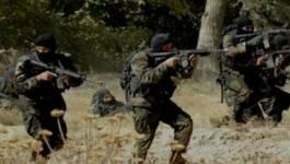 L'ANP découvre un important lot d'armes de guerre à El-Oued