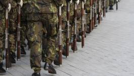 Deux terroristes abattus et des armes récupérées par l'ANP à Tizi Ouzou