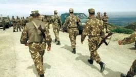 Quatre terroristes abattus par l'ANP dans la wilaya de Médéa