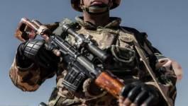 Huit terroristes éliminés par les forces de l'ANP à Médéa