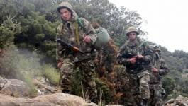 L'ANP élimine deux terroristes dans le massif forestier de Taza (Jijel)