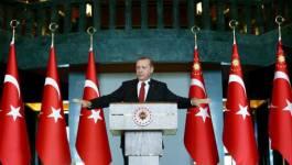 Erdogan à l'Occident : mêlez vous de ses affaires !
