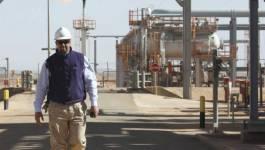 Compression de 40 % des travailleurs étrangers à In Salah Gas