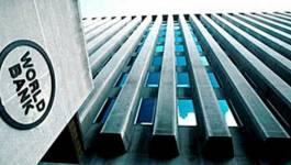Polémique Banque d'Algérie/Banque mondiale : éléments d'analyse