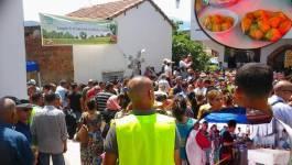 Sahel/Bouzeguène, Tizi Ouzou: 5e édition de la fête régionale de la figue de barbarie