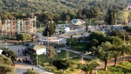 """""""Feu de broussailles"""" au parc d'attraction de Ben Aknoun, 1 hectare de ravagé"""