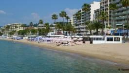 LDH : le maire de Cannes interdit la baignade et baigne dans la haine religieuse