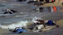 Au moins 162 morts dans le naufrage de migrants au large de l'Egypte