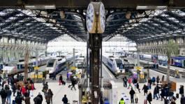 Trois femmes qui projetaient un attentat à la gare de Lyon (Paris) neutralisées