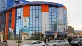 La consommation électrique moyenne se chiffre à 60 Da/jour/client à Batna, selon la Sonelgaz