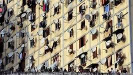 Explosion démographique en Algérie : quelles préconisations pour les années à venir ?