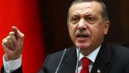 Le président Erdogan veut un référendum pour s'arroger les pleins pouvoirs