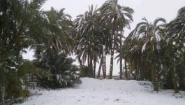 Images. Le Sahara algérien s'habille d'un manteau blanc