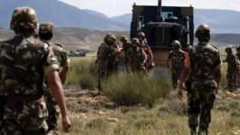 Deux terroristes abattus par un détachement de l'ANP à Skikda