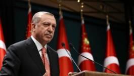 Recep Tayyip Erdogan est-il un provocateur ?