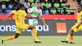 CAN 2017 : l'Algérie accrochée par le Zimbabwe (2 à 2)