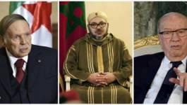 """L'Algérie, le Maroc et la Tunisie dirigés par des chefs d'Etat """"malades"""", estiment des députés français (Vidéos)"""
