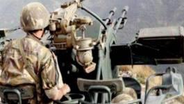 L'ANP élimine 14 terroristes à Al Adjiba, dans la wilaya de Bouira