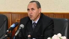 Recadrages et décalages du ministre de la Culture Azzedine Mihoubi