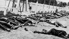 Un crime contre l'humanité... Au delà des mots, la réalité des crimes coloniaux