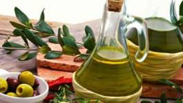 Un salon international de l'huile d'olive se tient à Alger jusqu'à samedi