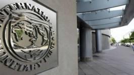 Le FMI s'inquiète du chômage des jeunes en Algérie!