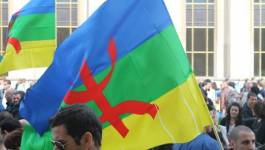 Taqbaylit vs. amazigh/tamazight