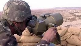 Reddition d'un terroriste à l'ANP à Bordj Badji Mokhtar