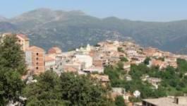 Des villages Kabyles refusent de payer les factures de la Sonelgaz