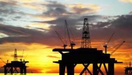 Le baril de pétrole en nette baisse