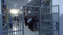 """Dabouz marche, Fekhar évacué vers Alger et Sofiane Tehteh """"appelé sous le drapeau"""""""