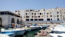 Scandale de destruction de l'hôtel El Marsa à Sidi Fredj ! (Images)