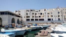Scandale de destruction de l'hôtel El Marsa à Sidi Fredj ! (Images)