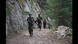 Un dangereux terroriste éliminé par l'ANP à Jijel