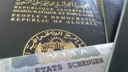 Visas pour la France : retard, bureaucratie,… rien ne va plus à TLS Contact