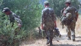 Un sixième terroriste éliminé par l'ANP à Ain Defla