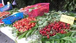 Kabylie : la fête de la cerise d'Ath Allaoua a connu une affluence record